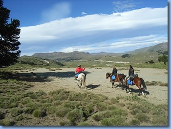 Argentina Pampa, on the Crossing the Andes on Horseback in Northern patagonia Trail