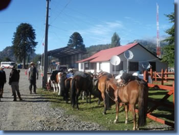 Border control in hile, on the Crossing the Andes on Horseback in Northern patagonia Trail