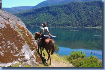 Rider on lakeshore on a horseback trail ride in NP Huequehue, Chile