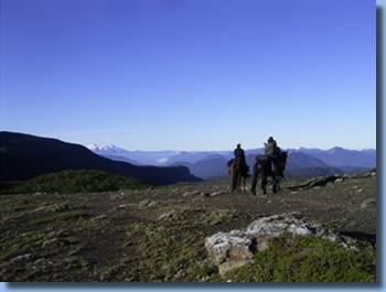 2 riders overlooking the valley on the volcano trail ride in NP Villarrica, Chile
