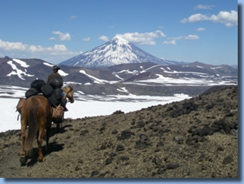 Rider and pack horse heading towards Lanin volcano on the volcano trail ride in NP Villarrica, Chile
