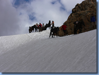 Group of riders riding through a snow field on the volcano trail ride in NP Villarrica, Chile