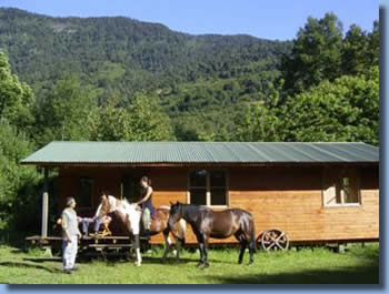 vacation on horseback in one of these cabins onthe horsefarm